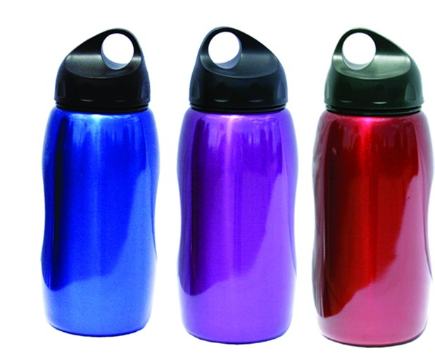 Texsport Wide Mouth Stainless Steel Beverage Bottle